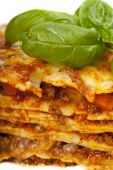 picture of lasagna  - close up of a lasagna dish with a basil leaf - JPG