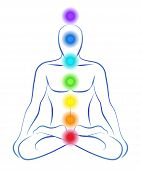 stock photo of plexus  - Illustration of a meditating person in yoga position with the seven main chakras - JPG
