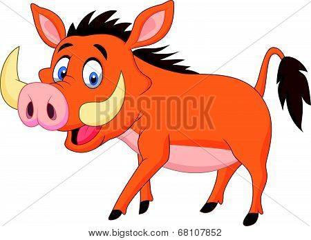 Cartoon warthog