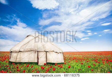 Urta Nomadic House At Poppy Flowers Field