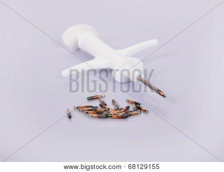 Syringe And Animal Id