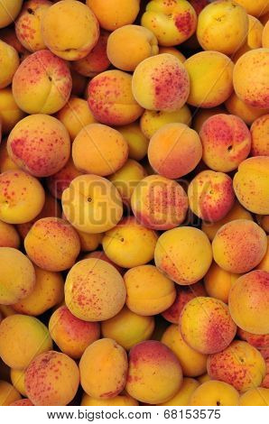 Background From  Apricots