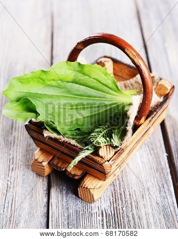 Medicinal herbs in wooden basket on table close-up