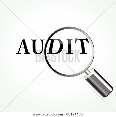 Vector Audit Theme Illustration