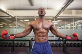 pic of boxing day  - Shirtless muscular boxer shouting in health club - JPG