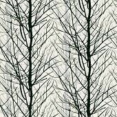 stock photo of winter trees  - Vector seamless pattern with trees silhouettes in black and white colors for fall winter fashion or Christmas wrapping paper - JPG