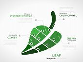 stock photo of photosynthesis  - Nature concept infographic template with leaf made out of puzzle pieces - JPG