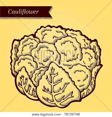 Retro cauliflower