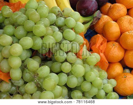Fruit (different Kinds)