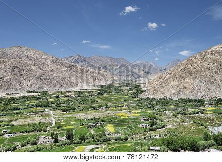 Green Valley Oasis At Desert Mountains