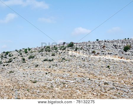 Karmiel Stones On The Hill 2008