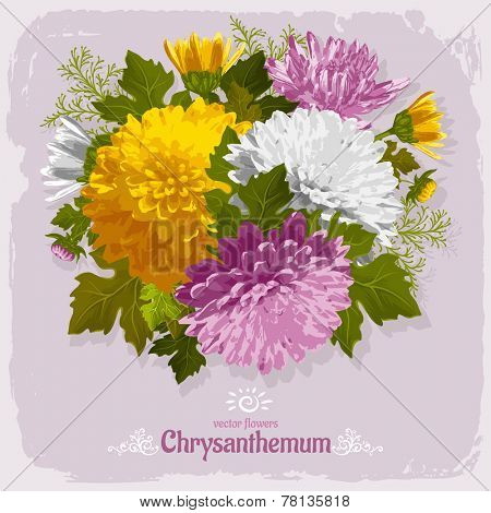 Beautiful illustration with bouquet of chrysanthemum on grunge background. Vintage design elements.