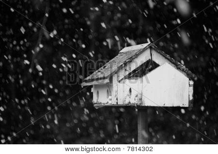 Birdhouse in Snowflakes