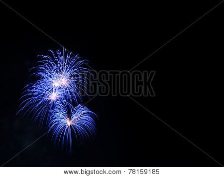 Blue Fireworks In The Black Sky With Copy Space