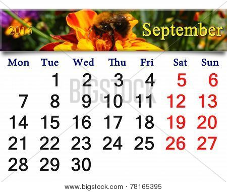Calendar For September Of 2015 With Bumblebee On The Tagetes