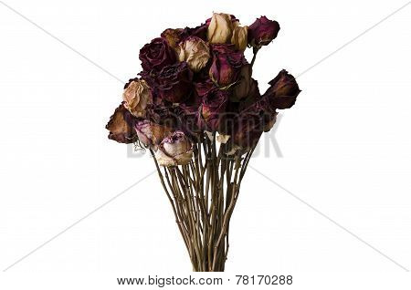 Bouquet Of Dried Flowers On A White Background