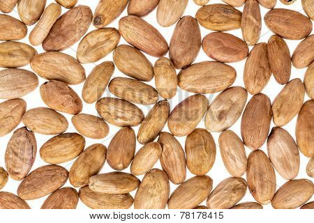 raw cacao beans o in shells against white background