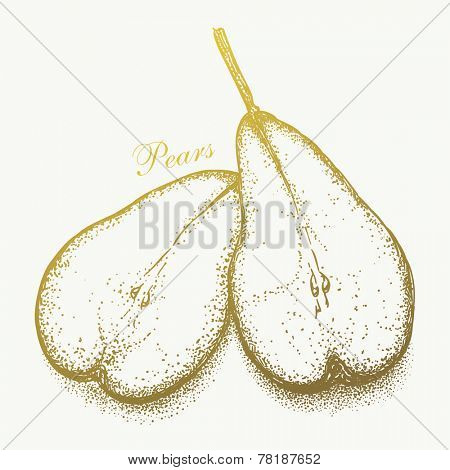 Hand-drawn pair of pears. Graphic vector eps8, black and white version