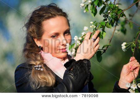 Beautiful Woman Among Blossoming Trees.