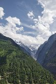 stock photo of ravines  - Ravine Forest On Slope And Glacier in India - JPG