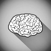 picture of human nervous system  - brain vector human symbol medicine illustration think - JPG