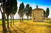 Постер, плакат: San Guido Oratorio Church And Cypress Trees Maremma Tuscany Italy Europe