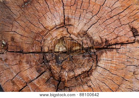 Old wood texture or background.