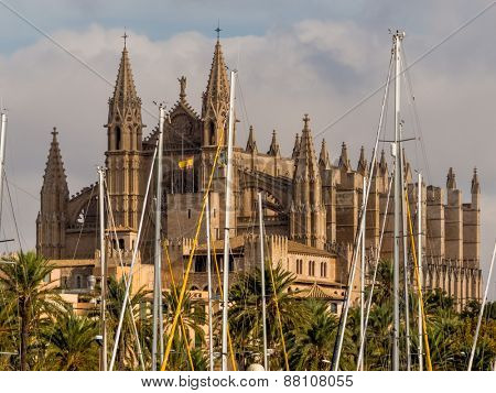 spain, mallorca, palma. the cathedral la seu as touristenatrraktion in the city center.