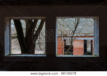 View from the window of an abandoned house