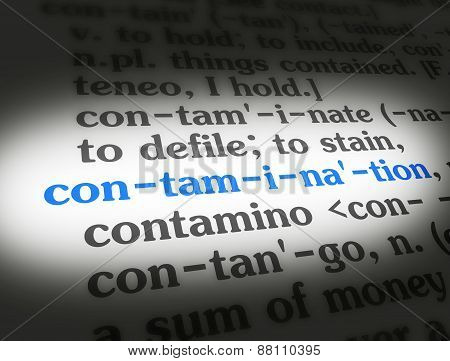 Dictionary Contamination