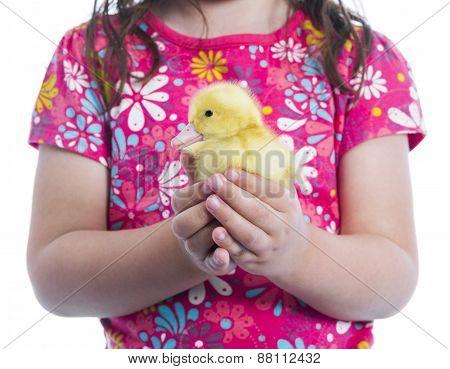 Little Girl Holding Duckling