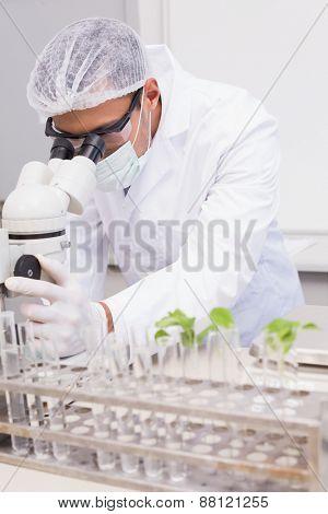 Focus scientist using microscope in the laboratory
