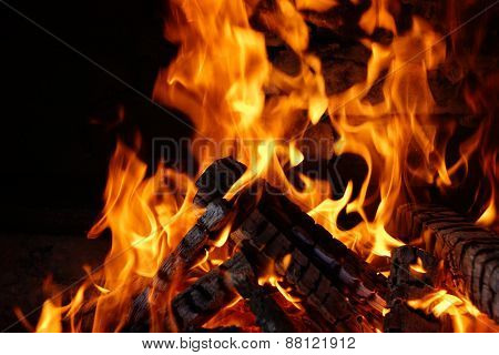 charred wood with bright flames