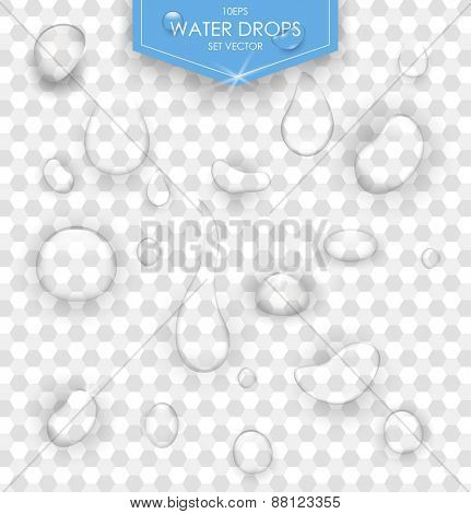 Pure clear water drops realistic set isolated vector illustration. Transparent water drop.