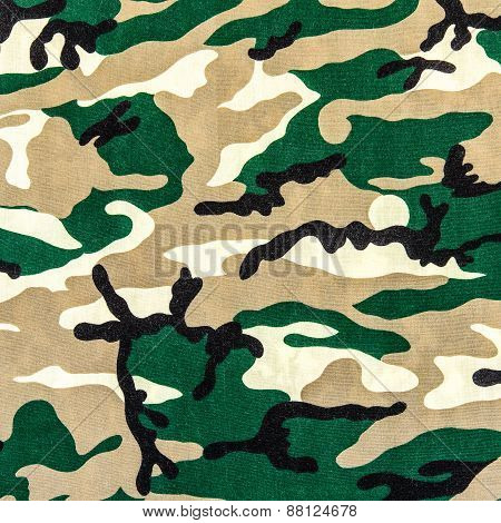 Texture Of Print Fabric Military Camouflage