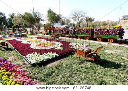 Flowers Gallery in Baghdad