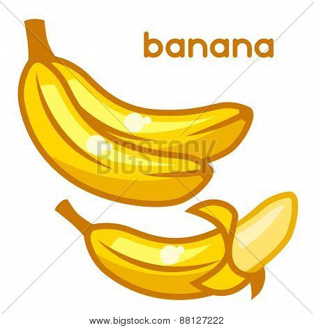 Stylized illustration of fresh bananas on white background