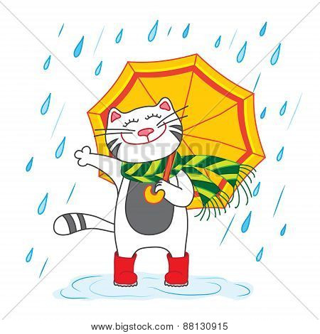 Cat with umbrella under the rain