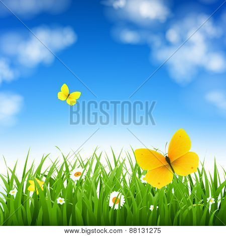 Nature Background With Grass With Gradient Mesh, Vector Illustration