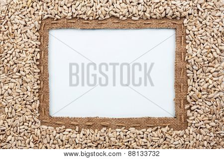 Frame Made Of Burlap With The Line And Sunflower Seeds Lies White Background