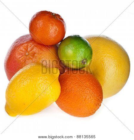 Beautiful citrus fruits isolated on white background
