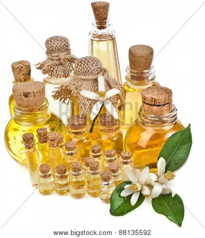 essential oil in bottles with fresh citrus flowers isolated on white background