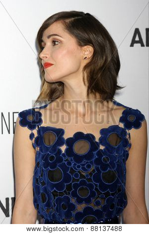 LOS ANGELES - FEB 15:  Rose Byrne at the