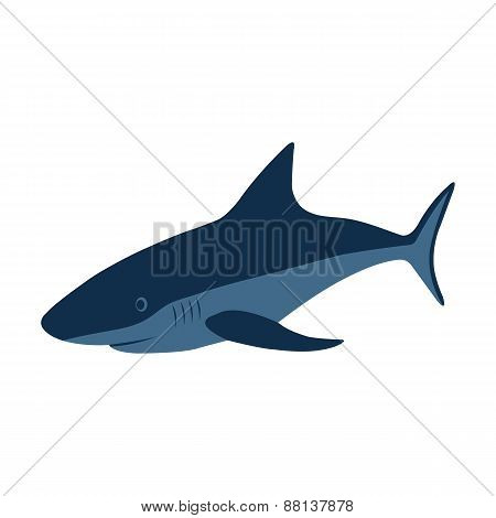 Shark, Vector Illustration