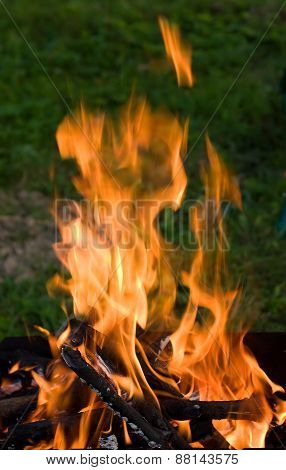 Camping Bonfire In The Dark