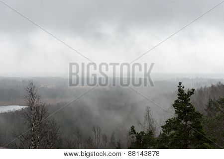 Panoramic View Of Misty Rain Forest
