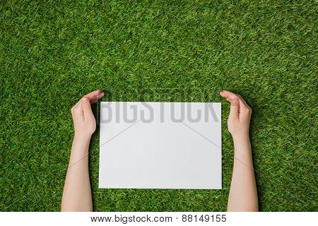 Hand holding blank sheet of paper over green grass