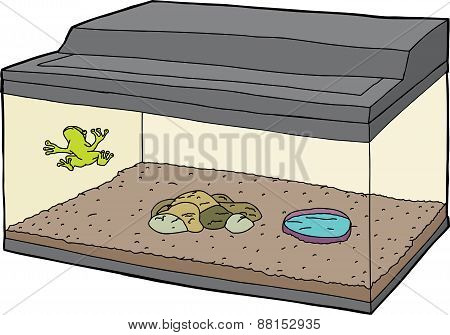Cartoon Of Frog In Aquarium