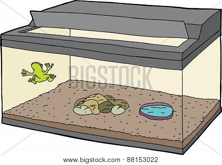 Frog In Tank With Open Lid