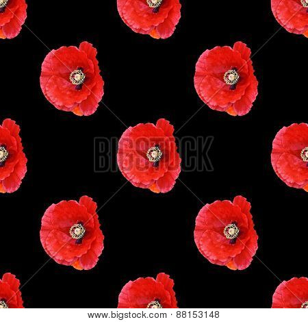 Seamless Pattern Red Poppies 2